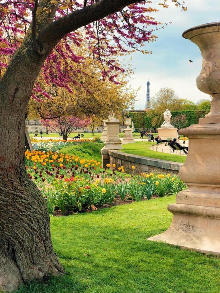 Przeznacz odpowiedni budżet na założenie ogrodu